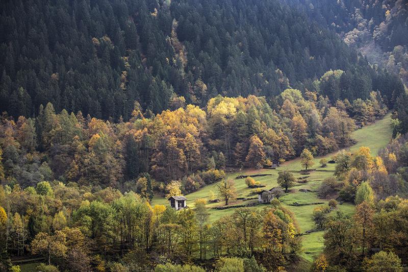 kastanjeleerpad Zwitserland Bergell nov. 2013