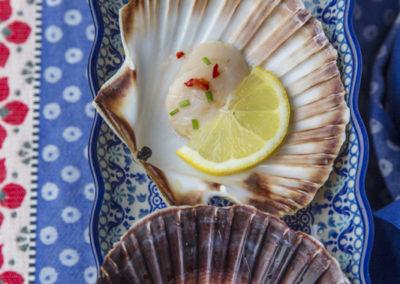 BUNZLAU CASTLE © www.paulinejoosten.nl