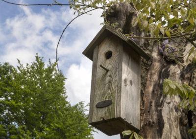 HUIZE HERMINE ART B&B ©photo:wwwpaulinejoosten.nl