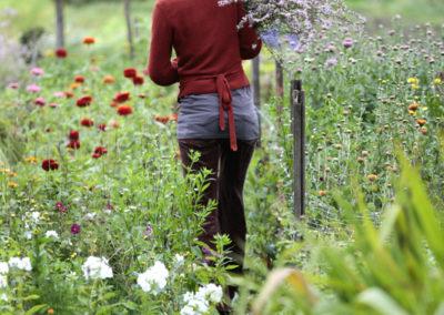 BLOEMKRACHT 8 © www.paulinejoosten.nl