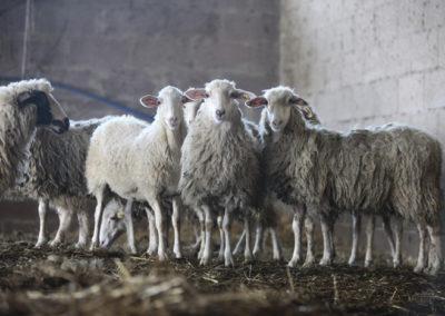 TESSA KIROS © www.paulinejoosten.nl